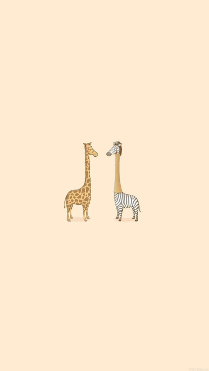 Hottest Iphone Wallpapers On Tumblr Cute Giraffe