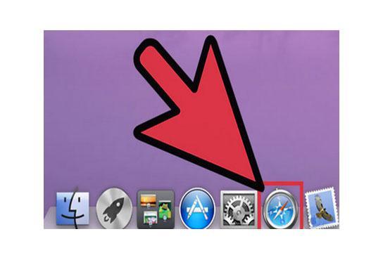 delete Safari browsing history