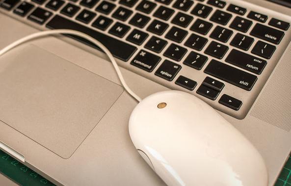 Cómo Hacer la Rueda de Desplazamiento del Ratón que No Funciona en Windows y Mac