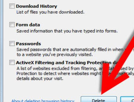 elimina la navegación de datos de IE