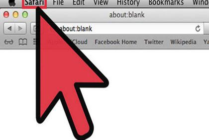 elimina el historial de busquedas de Safari