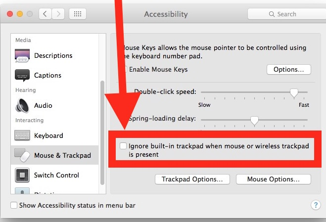 mouse-accessibility-mac