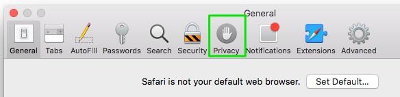 privacy tab on safari