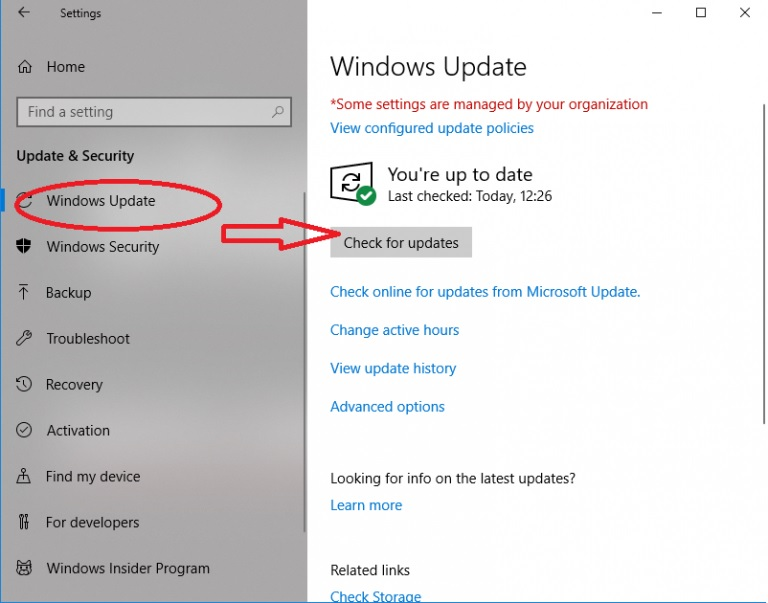 update windows photo viewer