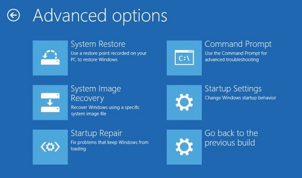 Windows Advanced Startup Options