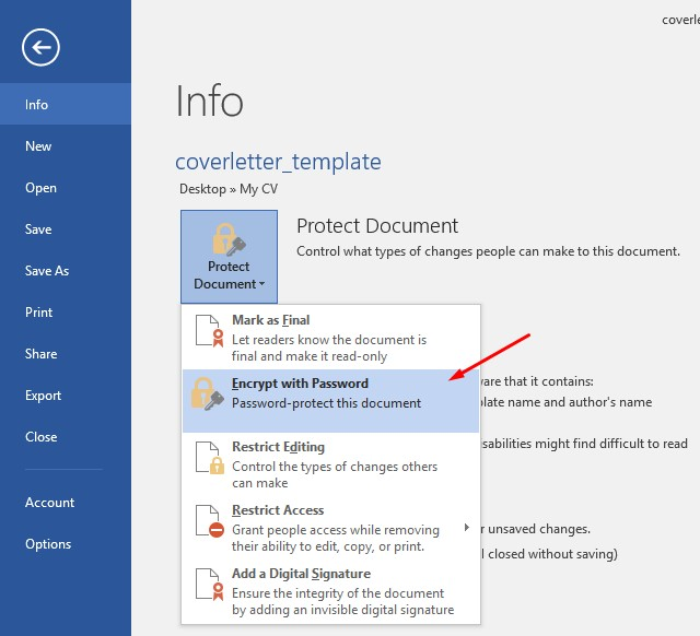 word protect document