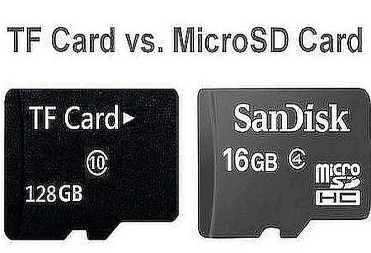 TF Card vs. SD Card