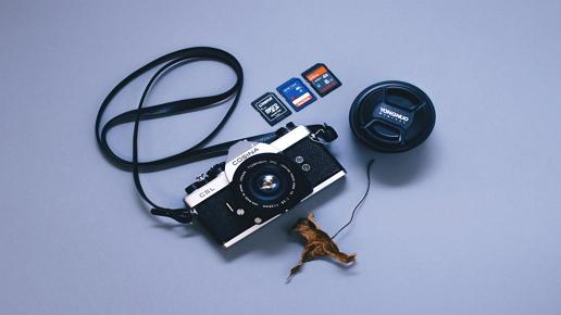 Wiederherstellen gelöschter Bilder von microSD-Karten