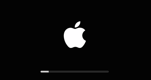 what-makes-macbook-get-stuck-on-the-apple-logo